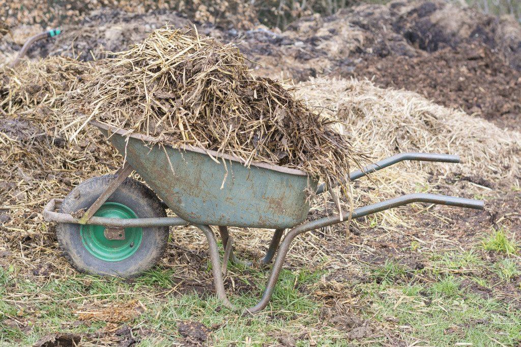 Dlaczego warto wykonać plan nawożenia w gospodarstwie i jak to zrobić?