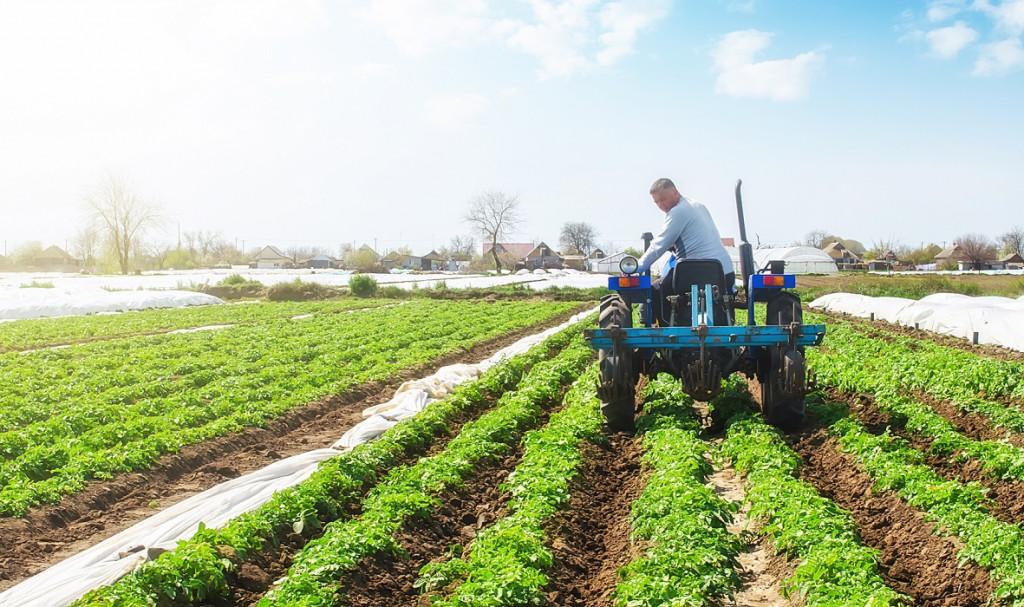 Rodzaje i typy ciągników rolniczych