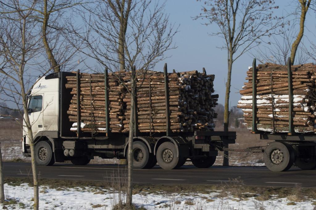 Przegląd samochodów do przewozu drewna - artykuł na blogu Mascus Polska